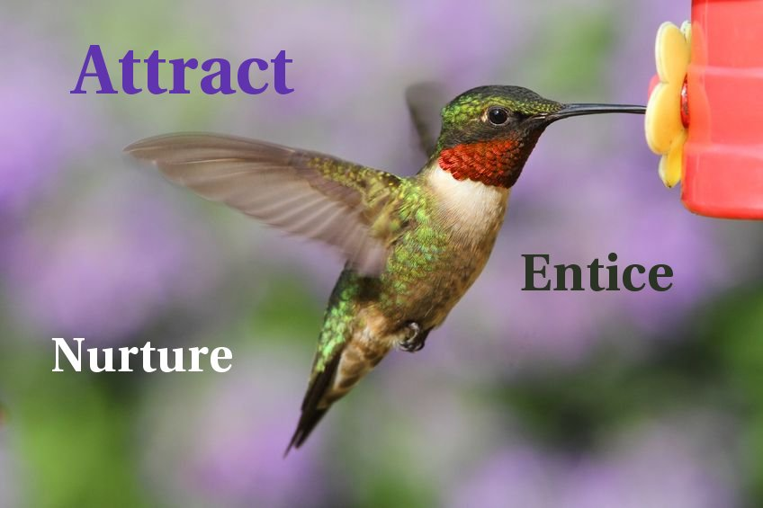 Inbound Marketing Entice Nurture Attract